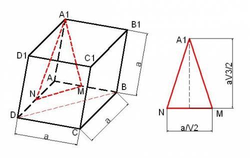 10-й класс дано: куб, м n-cередины ребер ав и ад соответственно через а1мn проведена плоскость 1.пос