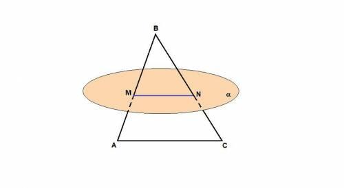 Точки m и n соответственно середины сторон ab и bc треугольника abc. прямая mn лежит в плоскости a.