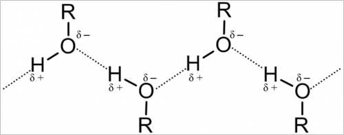 Составьте схему образования водородной связи между молекулами: а) этанола; б) аммиака