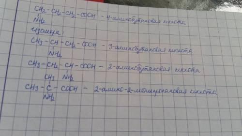 Составьте структурные формулы трех изомеров и назовите их для вещества: h2n-ch2-ch2-ch2-cooh.