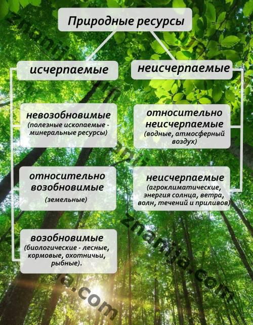 Составьте схему классификации природных ресурсов