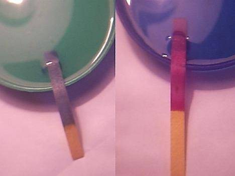 Яким буде забарвлення лакмусу у розчині нітратної кислоти