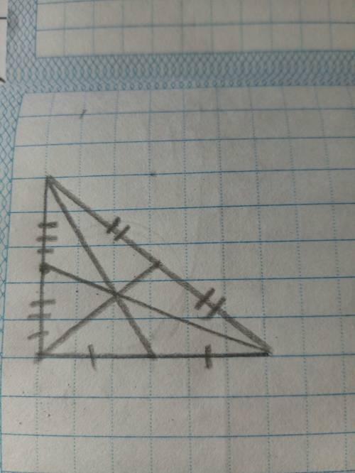 Постройте произвольный треугольник с циркуля и линейки проведите биссектрисы треугольника