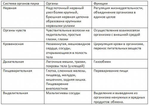 Заполните таблицу: система органов паука, органы , функции