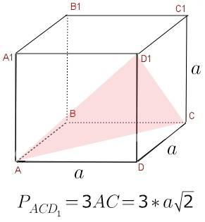 Дан куб abcda1b1c1d1. построить сечение с плоскостью проходящей через точки a c d1. и найти периметр