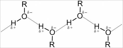 Напишите схему образования водородной связи на примере этанола.