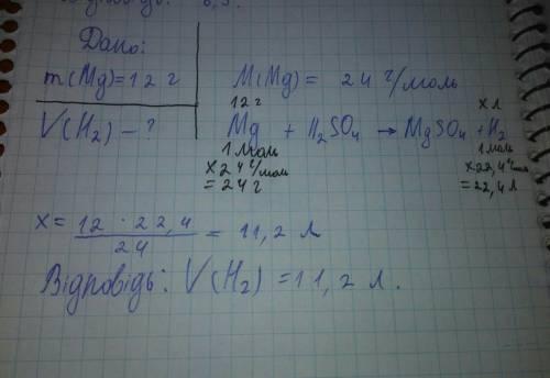 Обчисліть об'єм водню що виділиться при взаємодії магнію масою 12 г з сульфатною кислотою