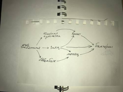 Как можно сделать схему цепи питания тундры(за ранее )