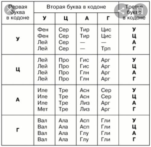 Фрагмент цепи днк имеет следующую последовательность нуклеотидов: атт-гцт-тат-тцц. определите послед