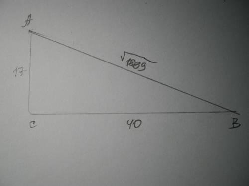 Начерти прямоугольный треугольник ABC так, чтобы ∢C =90°. AC= 17 см и BC= 40 см. Найди отношение сто