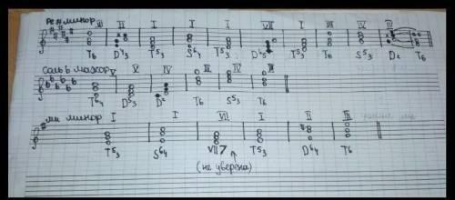 Построить и спеть аккордовую последовательность в тональности с двумя диезами; T53 T6 D64 D43 T8 S64