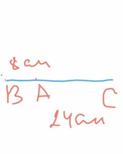 Отрезок BC длиной 32 см разделили точкой А на два отрезка в отношении 1 : 3. Определите длину каждог