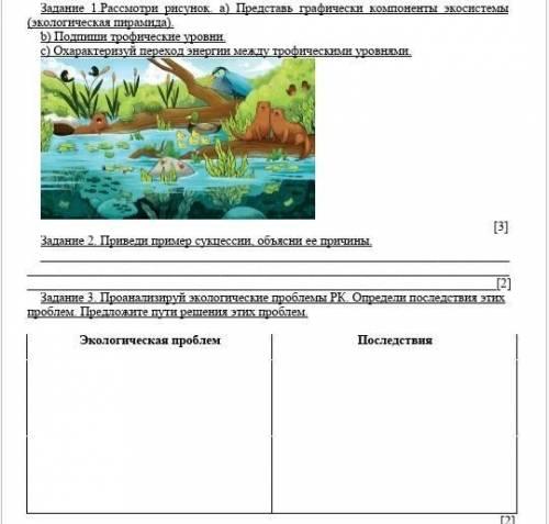 Задание 1.Рассмотри рисунок. а) Представь графически компоненты экосистемы (экологическая пирамида П