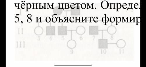 4. По изображённой на рисунке родословной определите и объясните характер наследования признака, вы
