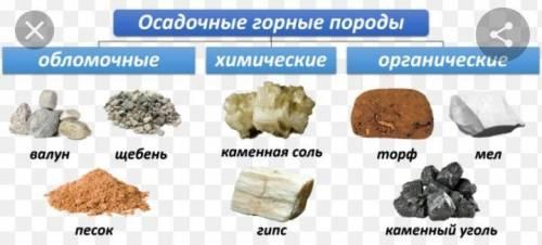 Заполните таблицу осадочные горные породы памогите 